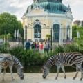 Austria, tara unde se gaseste cea mai veche gradina zoologica din lume